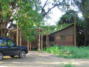 Limpopo Forest Tented Camp